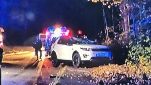 ألمانيا : شجرة تسقط على سيارة و تودي بحياة السائقة